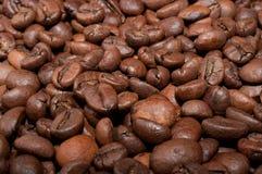 Habas de Coffe Fotografía de archivo libre de regalías