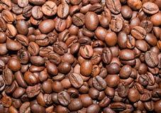 Habas de Coffe Imagen de archivo libre de regalías