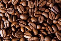 Habas de Coffe Fotografía de archivo