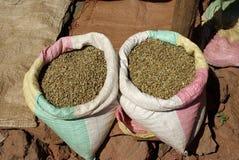 Habas de Coffe, África Imagenes de archivo