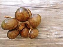 Habas de Djenkol o semilla del jiringa de Archidendron (Luk Nieng tailandés) con el fondo de madera Imagen de archivo