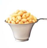 Habas de la soja Imagen de archivo libre de regalías