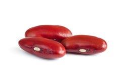 Habas de riñón rojas Imagen de archivo libre de regalías