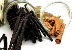 Habas de vainilla y palillos de cinamomo Imagen de archivo libre de regalías