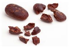 Habas del cacao. imagen de archivo