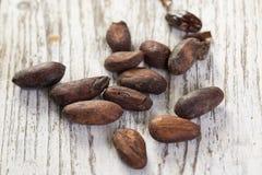 Habas del cacao Foto de archivo libre de regalías