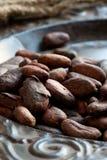 Habas del cacao (cacao) Imágenes de archivo libres de regalías