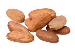 Habas del cacao (cacao del Theobroma) imagen de archivo libre de regalías