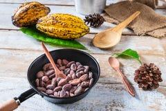 Habas del cacao y vainas crudas del cacao en los tableros de madera foto de archivo libre de regalías