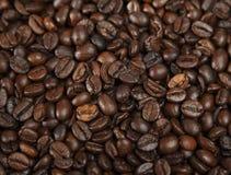 Habas del café express Fotos de archivo libres de regalías