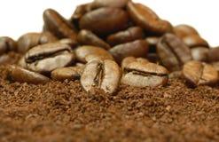 Habas frescas del café molido Imágenes de archivo libres de regalías