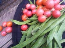 Habas orgánicas deliciosas de Cherry Tomatoes y de corredor Fotografía de archivo
