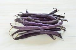 Habas rápidas de la cera púrpura Imagen de archivo