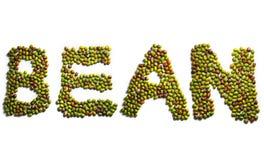 Habas verdes Imagen de archivo libre de regalías