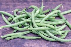 Habas verdes del jardín de cosecha propia fresco Foto de archivo libre de regalías