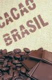 Habas y arpillera del cacao Fotos de archivo libres de regalías