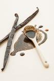 Habas y cuchara de vainilla con el extracto Fotos de archivo libres de regalías