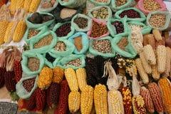 Habas y gérmenes del maíz Foto de archivo libre de regalías