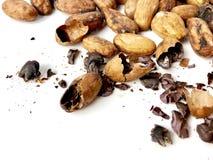 Habas y semillas del cacao imagenes de archivo