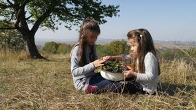 Haben glückliches Mädchen zwei Spaß in der Wiese und essen Trauben stock footage
