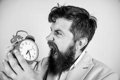 Habilidades de gesti?n de tiempo Cu?nta hora hasta plazo Hora de trabajar Reloj agresivo barbudo del control del hombre de negoci foto de archivo