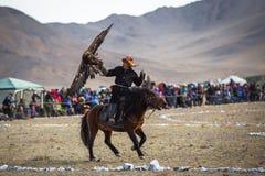 Habillement traditionnel kazakh d'Eagle Hunter, tout en chassant aux lièvres tenant un aigle d'or sur son bras Image stock
