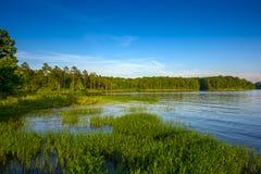 habitat стоковое фото