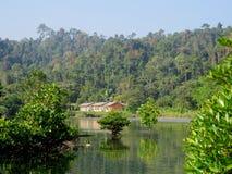 Habitat at Bartang Stock Photo