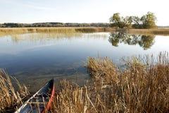 Habitat d'oiseaux aquatiques - compartiment de Presqu'ile, lac Ontario Photos libres de droits