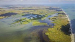 Habitat de marécage dans le delta de Danube, Roumanie Images libres de droits