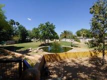 Habitat de zoo de l'Arizona photographie stock libre de droits