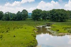 Habitat di conservazione del terreno coltivabile Fotografie Stock Libere da Diritti