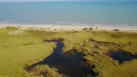 Habitat nel delta di Danubio, Romania, vista aerea della zona umida video d archivio