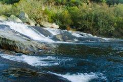Habitat van het water Royalty-vrije Stock Foto's