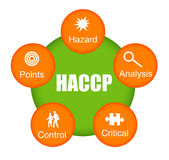 HACCP illustrazione di stock