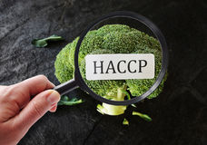 HACCP food safety. Broccoli with HACCP label Hazard Analysis and Critical Control Points -- food safety concept royalty free stock images