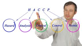HACCP Regulatory Requirements Royalty Free Stock Images