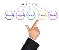 HACCP Regulatory Requirements. Diagram of HACCP Regulatory Requirements stock photo