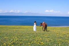 Hacer frente al mar Imagen de archivo libre de regalías