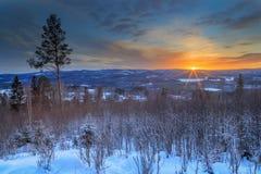 Haces del invierno Imagen de archivo libre de regalías