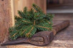 Hacha en ramas spruce reducidas Fotos de archivo