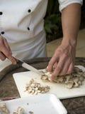 Hachage des champignons de couche Image stock