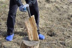 Hachage du bois avec une hache photo stock