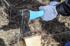 Hachage du bois avec une hache photographie stock libre de droits