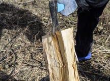 Hachage du bois avec une hache images stock