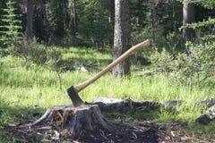 Hache dans le tronçon d'arbre photo stock