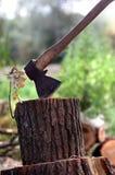 Hache dans le tronçon de chêne Image stock