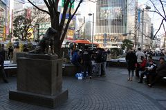 Hachiko雕象那` s著名为它的忠诚 免版税库存图片