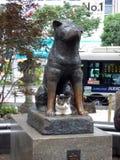 日本 东京 涩谷区 狗Hachiko的雕象 库存图片
