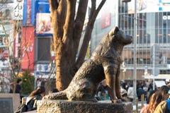 Hachiko纪念雕象在涩谷,东京 免版税库存图片